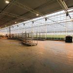 Dutch Heritage Greenhouse